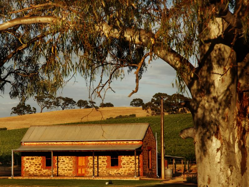 Hentley Farm - Cellar Door