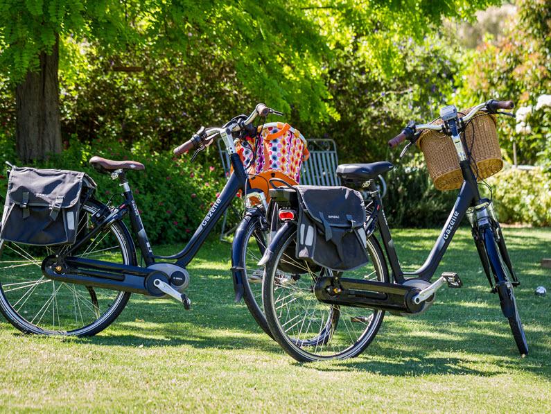 enjoy walking or riding along the seppeltsfield road bike trail